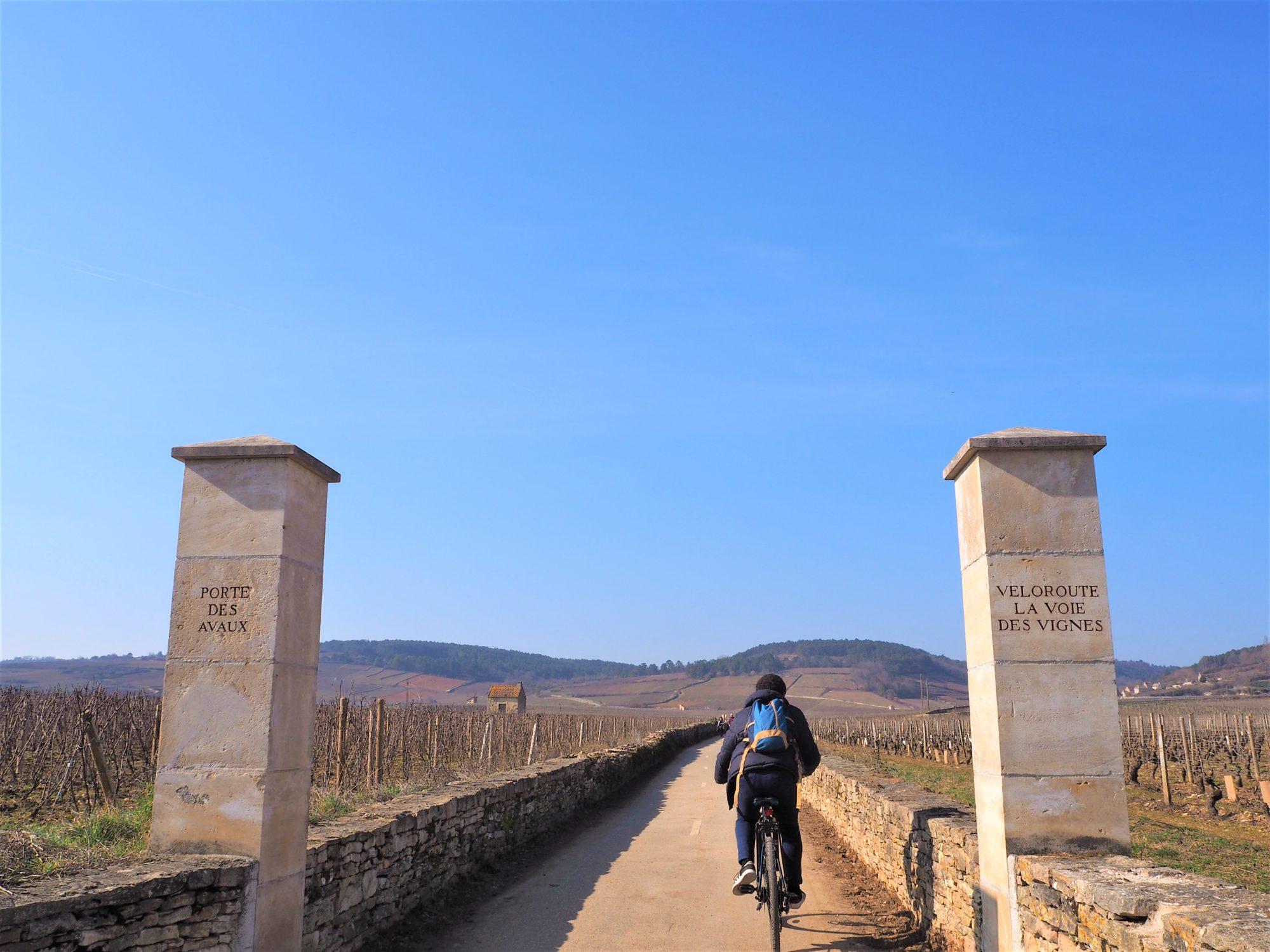 Entrée de la voie des vignes bourgogne, beaune, France clioandco slow travel