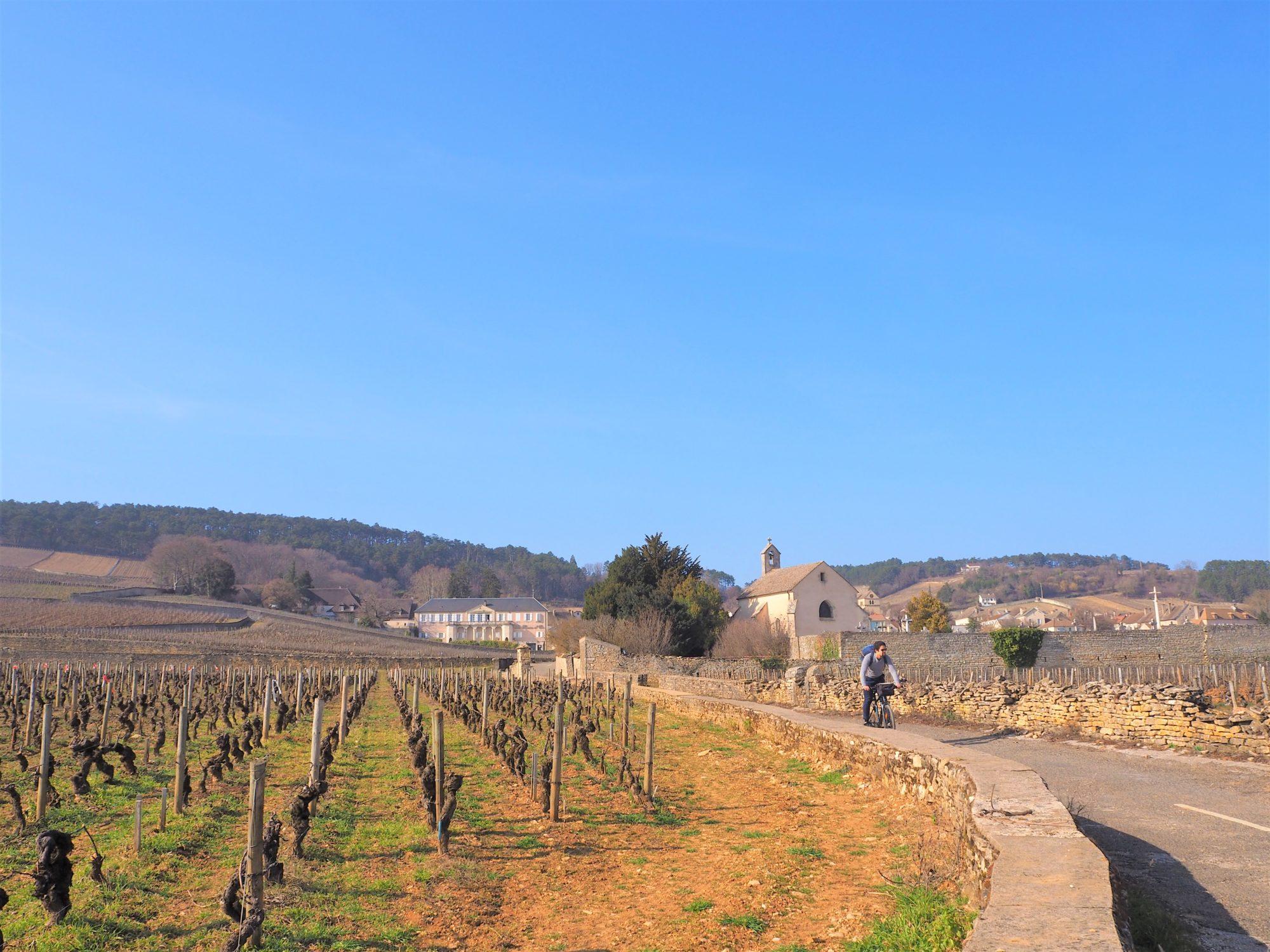 La voie des vignes En sortant de Volnay