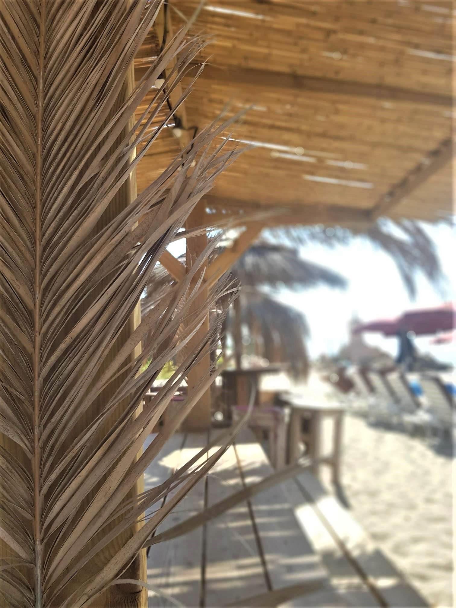 clioandco blog voyage corse plage