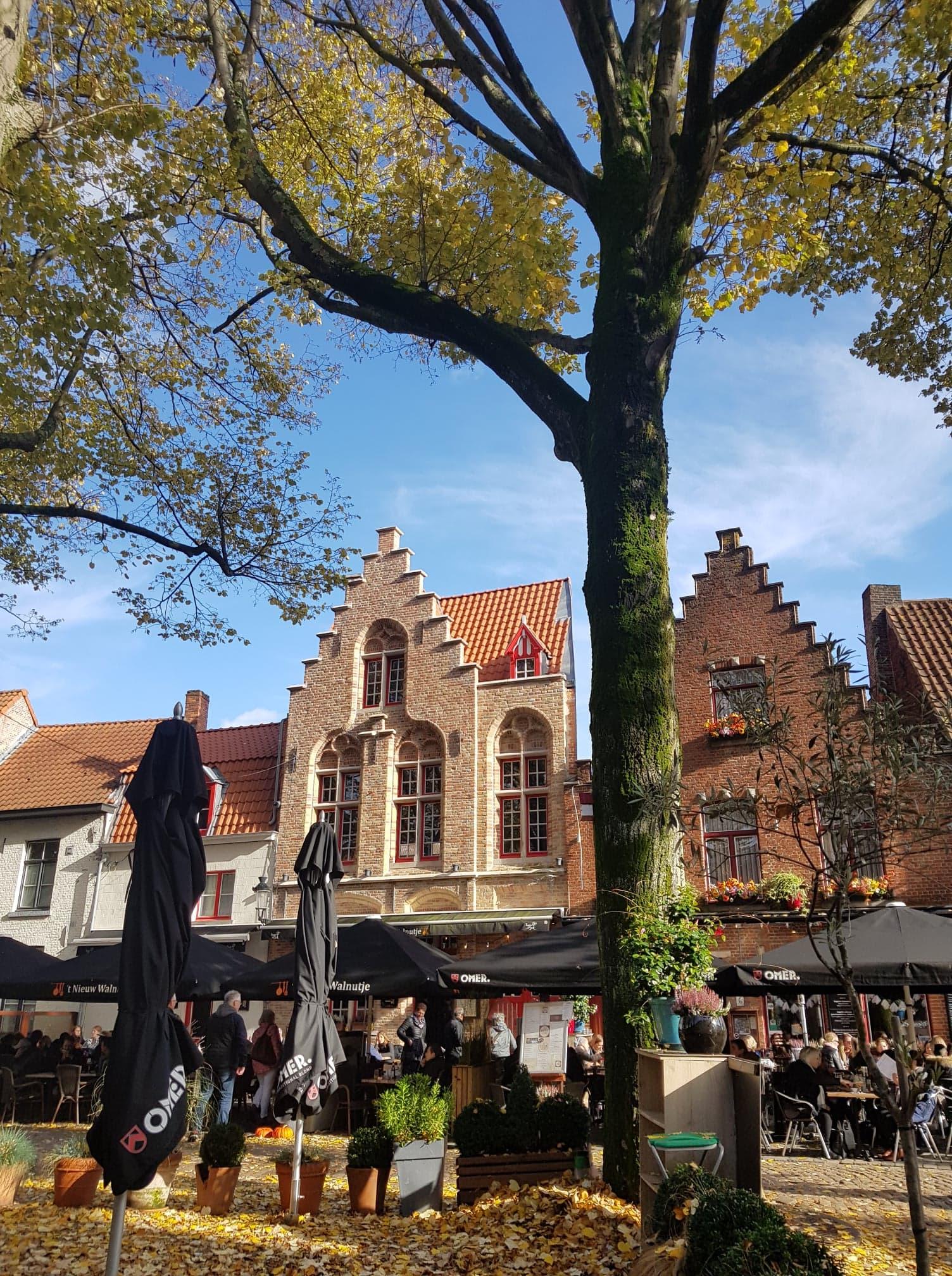 automne Bruges Belgique Clioandco blog voyage rue