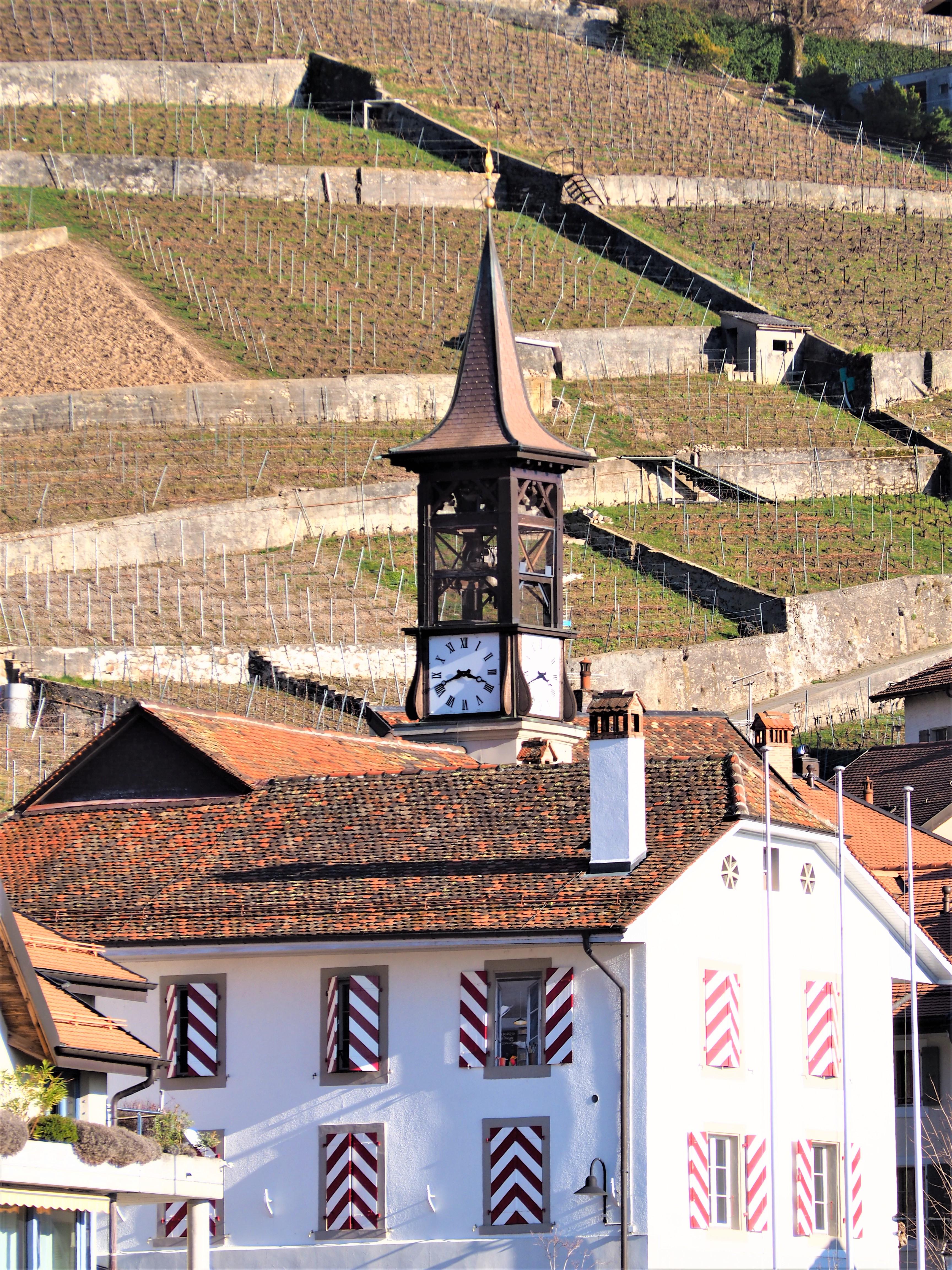 Aran-Clioandco-blog-voyage-lausanne-suisse-canton-de-vaud-vignoble-de-Lavaux-balade