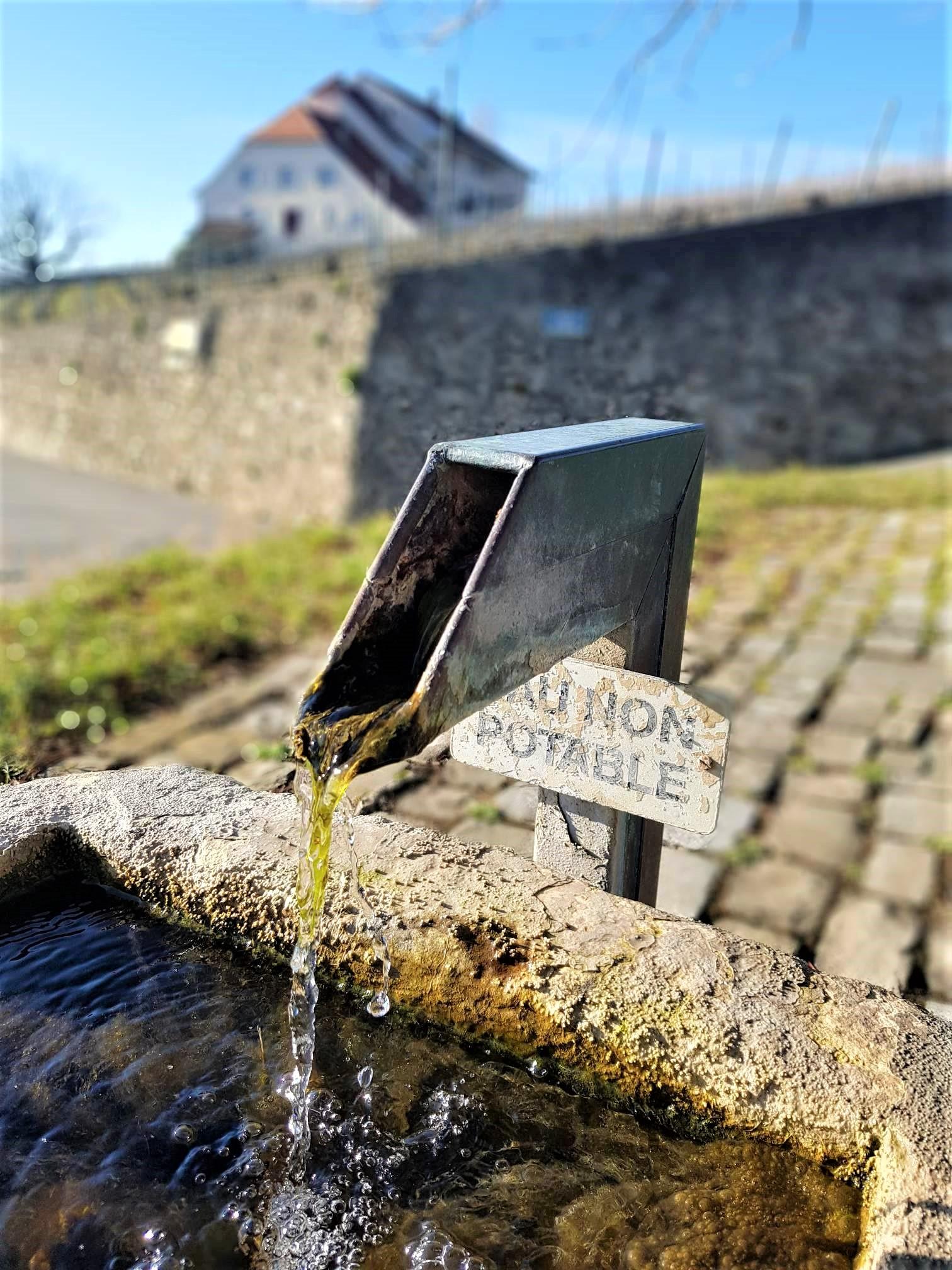 Clioandco-blog-voyage-lausanne-suisse-canton-de-vaud-Lavaux-balade-fontaine