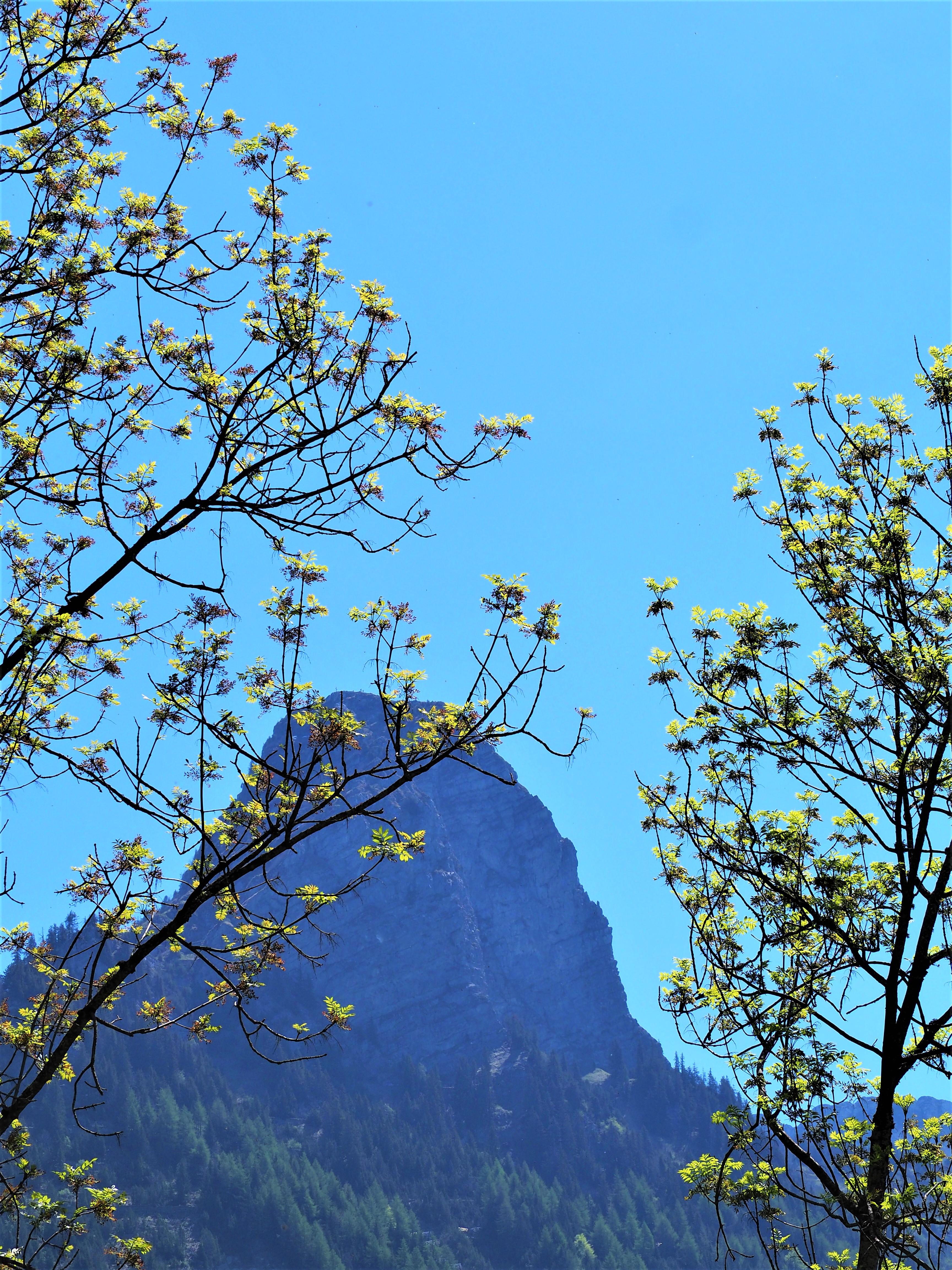 Dent de jaman lausanne balade suisse blog voyage clioandco