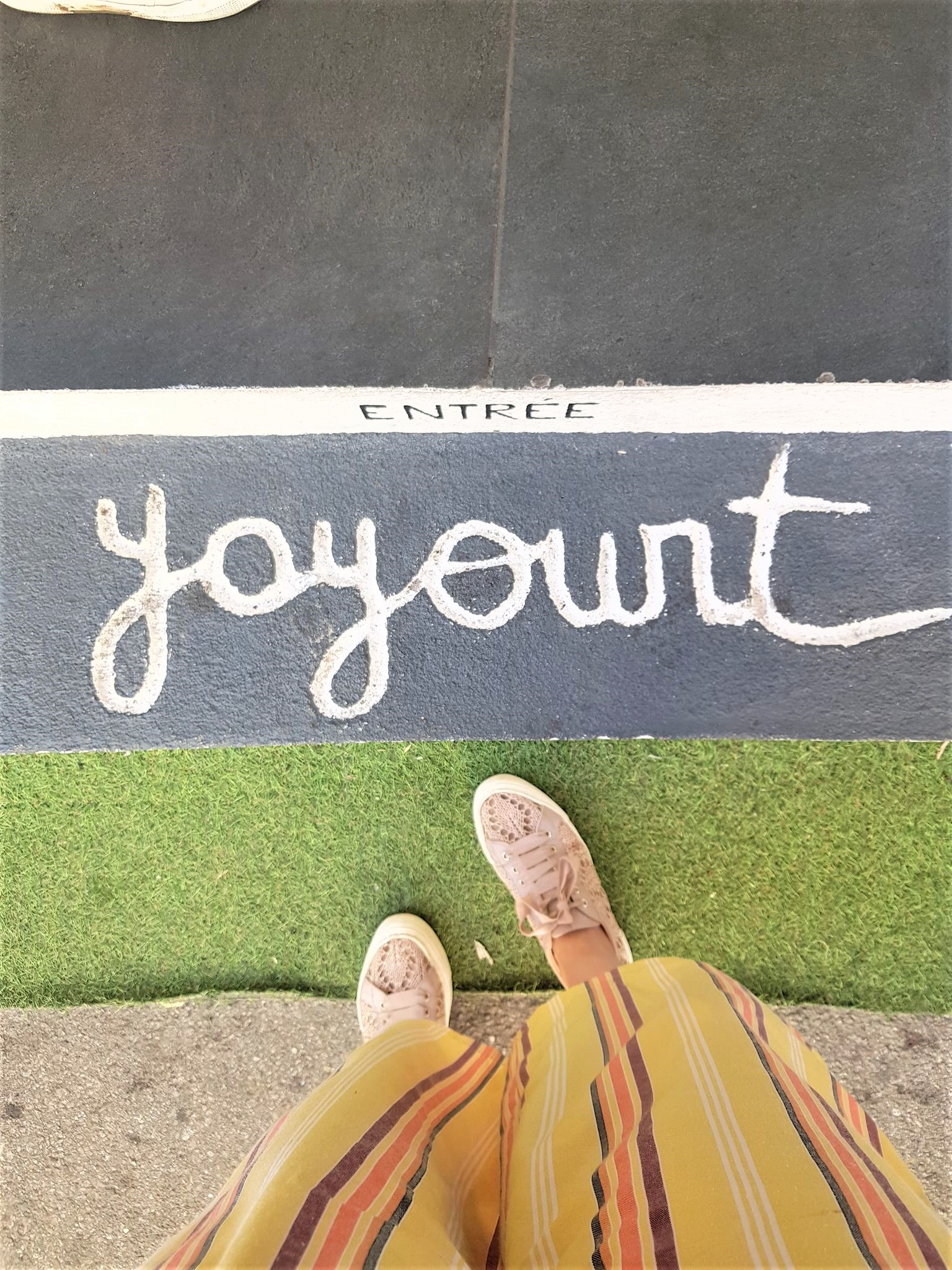 Entrée Yoyourt frozen yogourt sans sucre ajaccio blog voyage corse clioandco