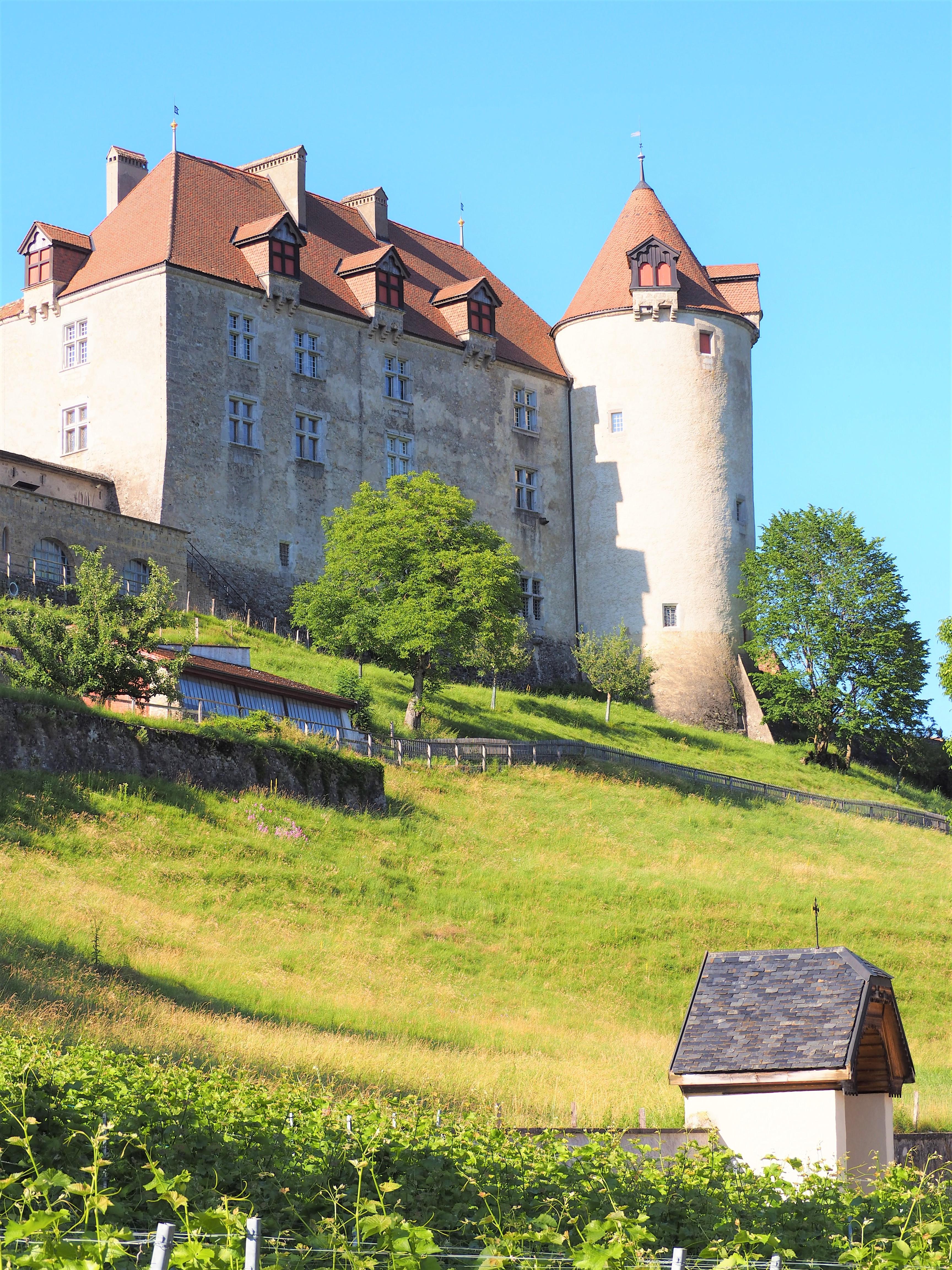 Visiter-Gruyères-canton-de-Fribourg-Suisse-chateau-vue-den-bas-clioandco