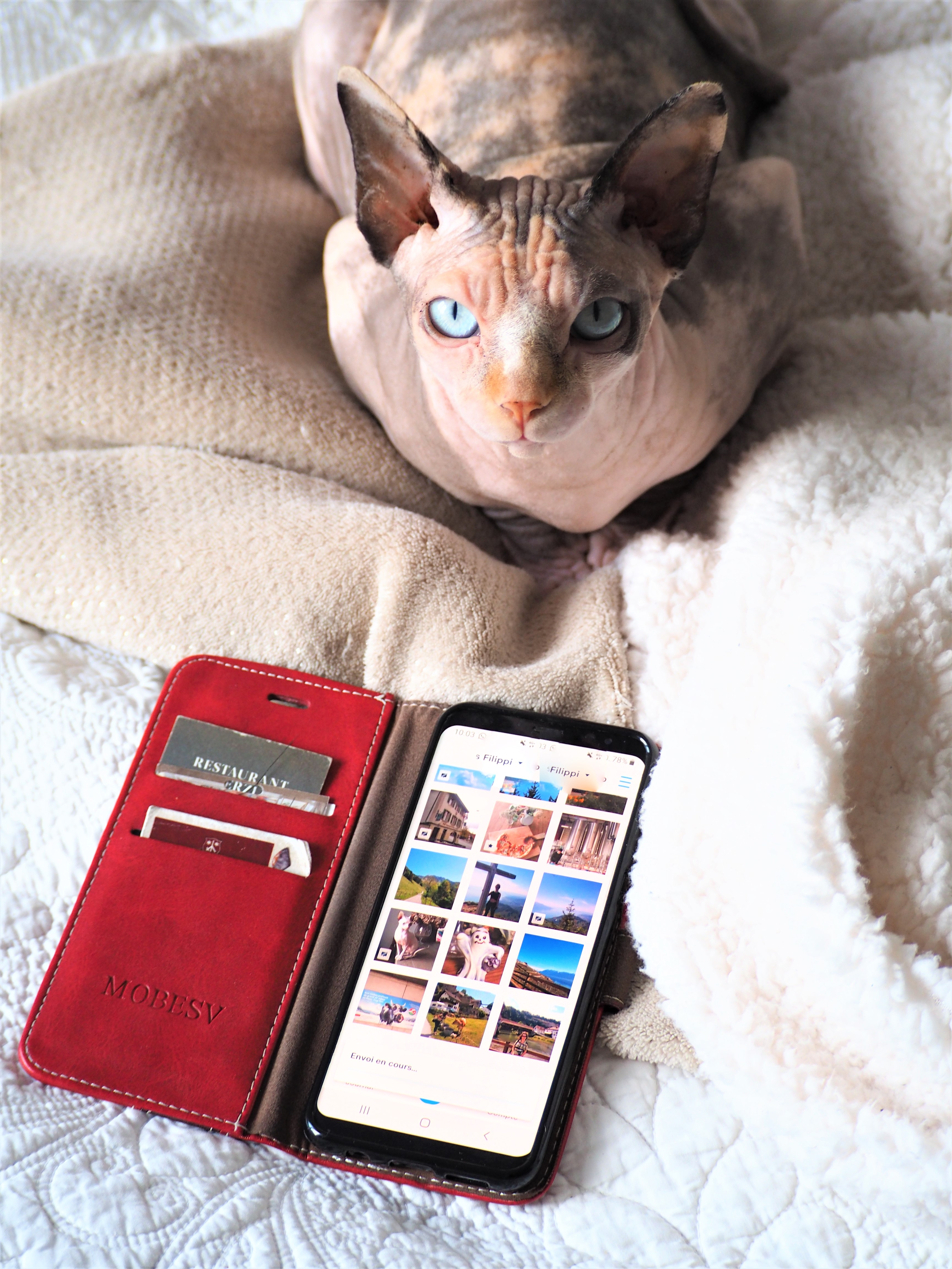 neveo journal photo papier application smartphone code promo