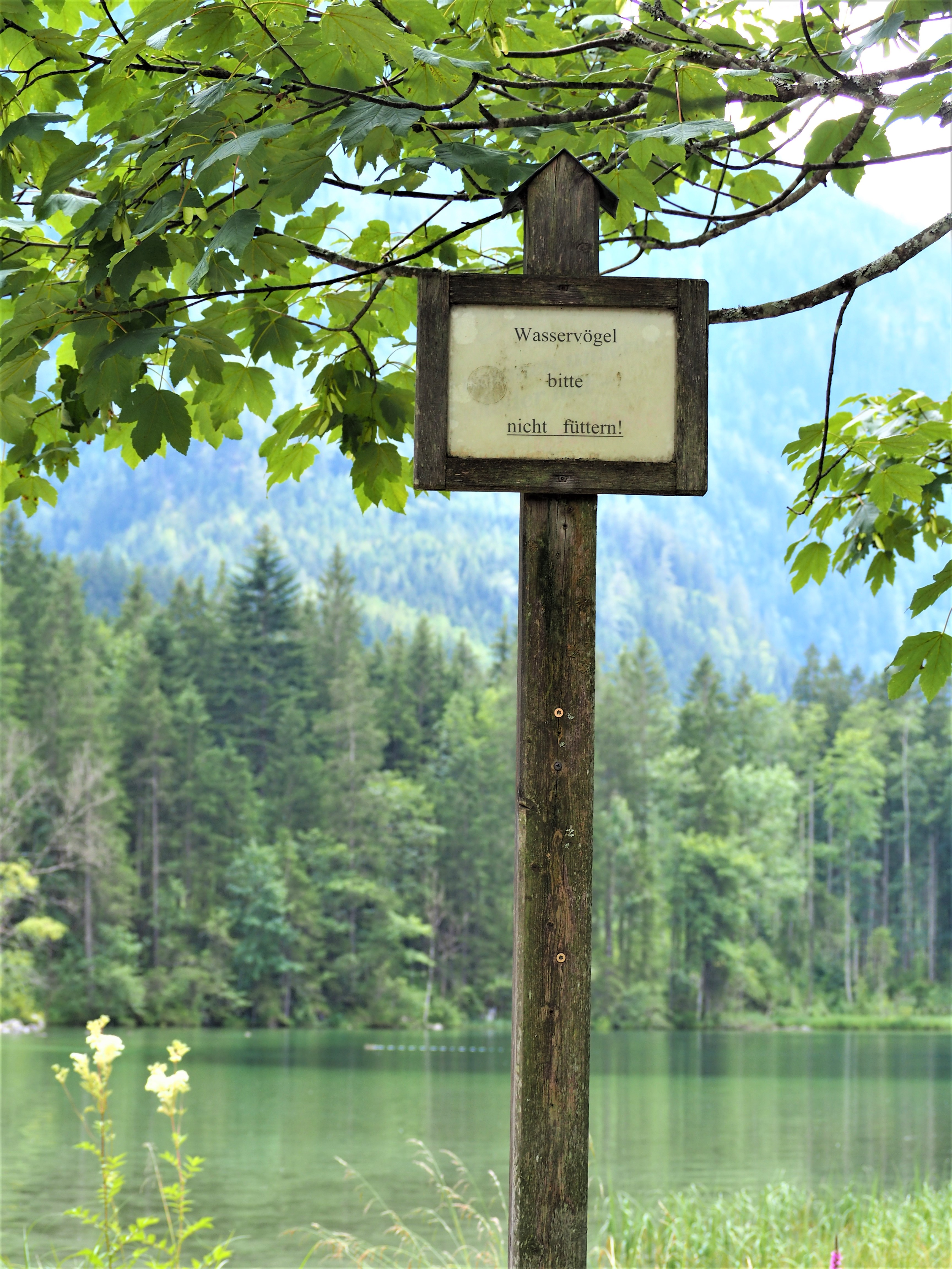 Allemagne-Baviere-clioandco-blog-voyage-proche-lac-Hintersee-panneau