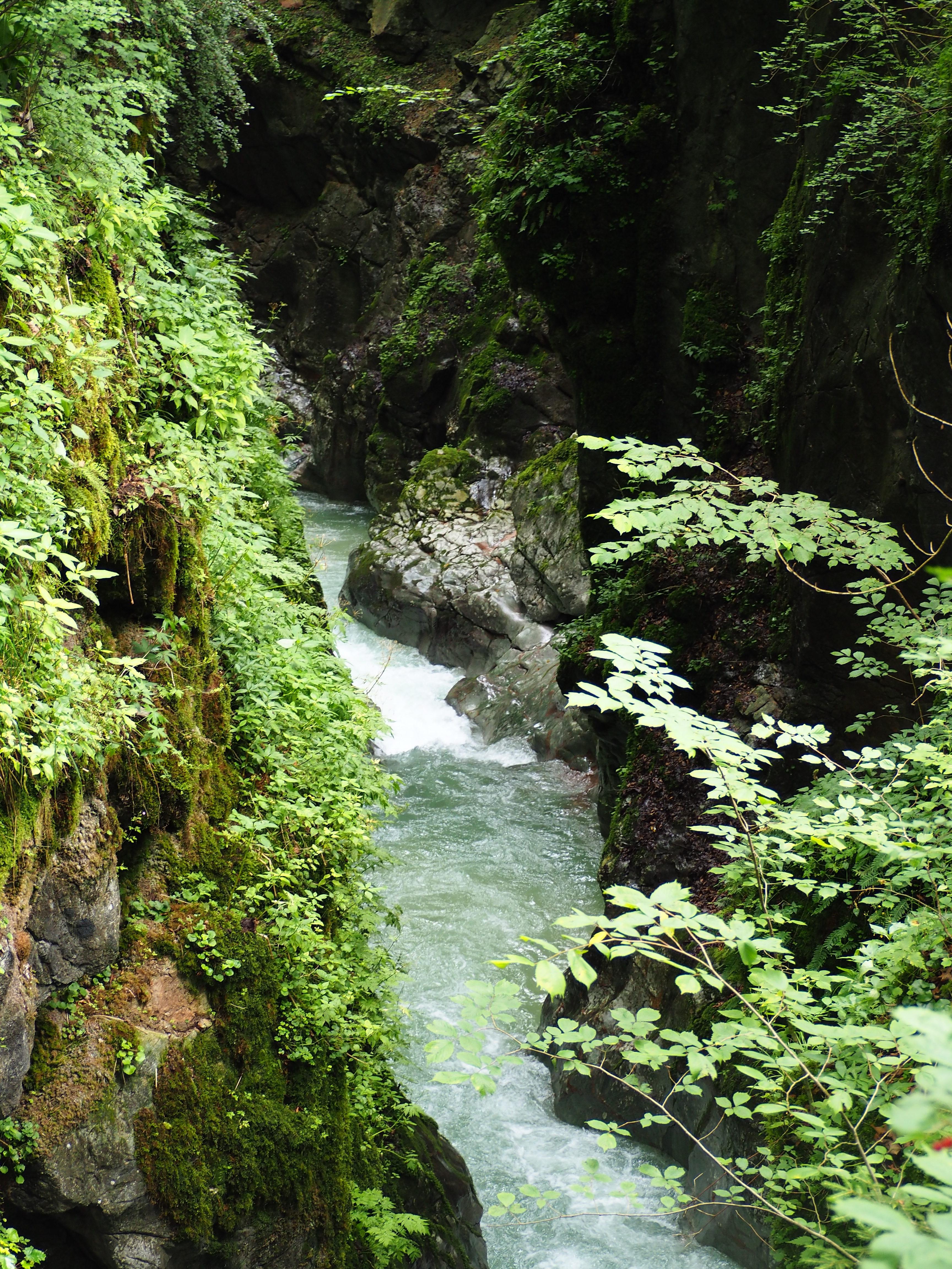chemin-de-randonnee-depuis-Ramsau-bei-Berchtesgaden-Allemagne-pour-aller-jusquau-lac-Hintersee-eau-rotated.