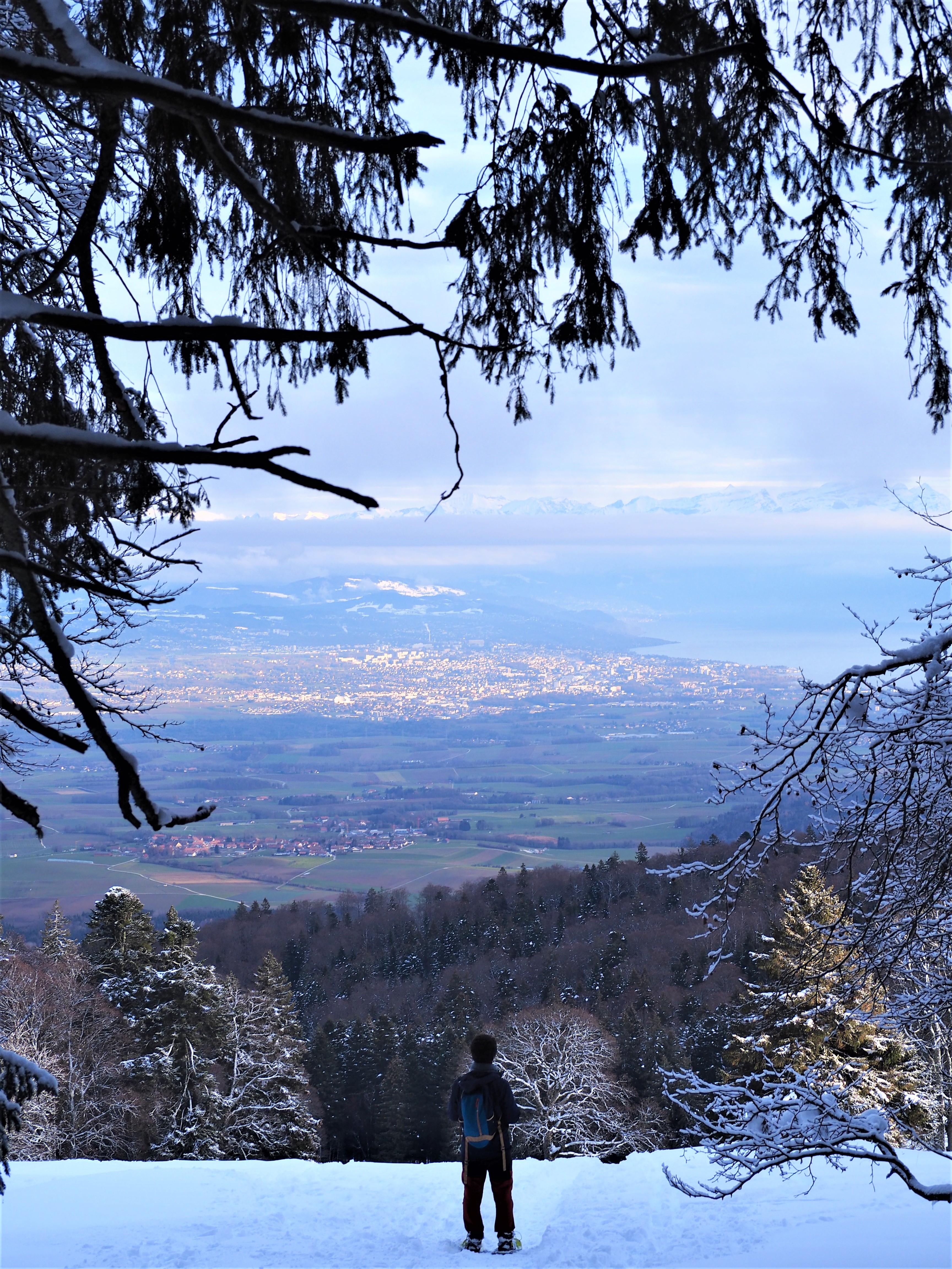 Suisse-Canton-de-Vaud-Jura-Mont-Tendre-randonnee-clioandco-blog-voyage-vue-sur-Lausanne