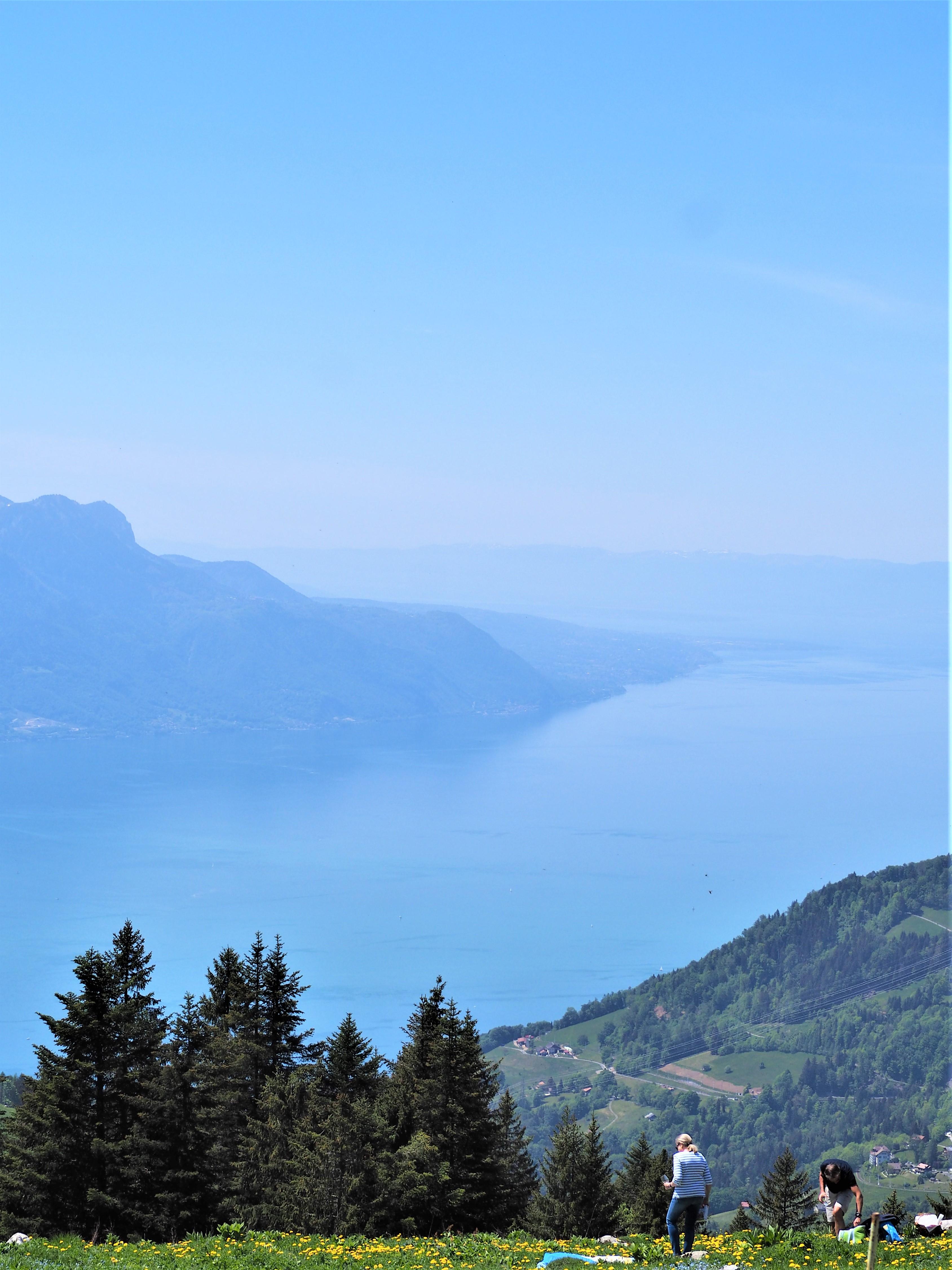 Suisse-randonnee-Dent-de-Jaman-canton-de-Vaud.