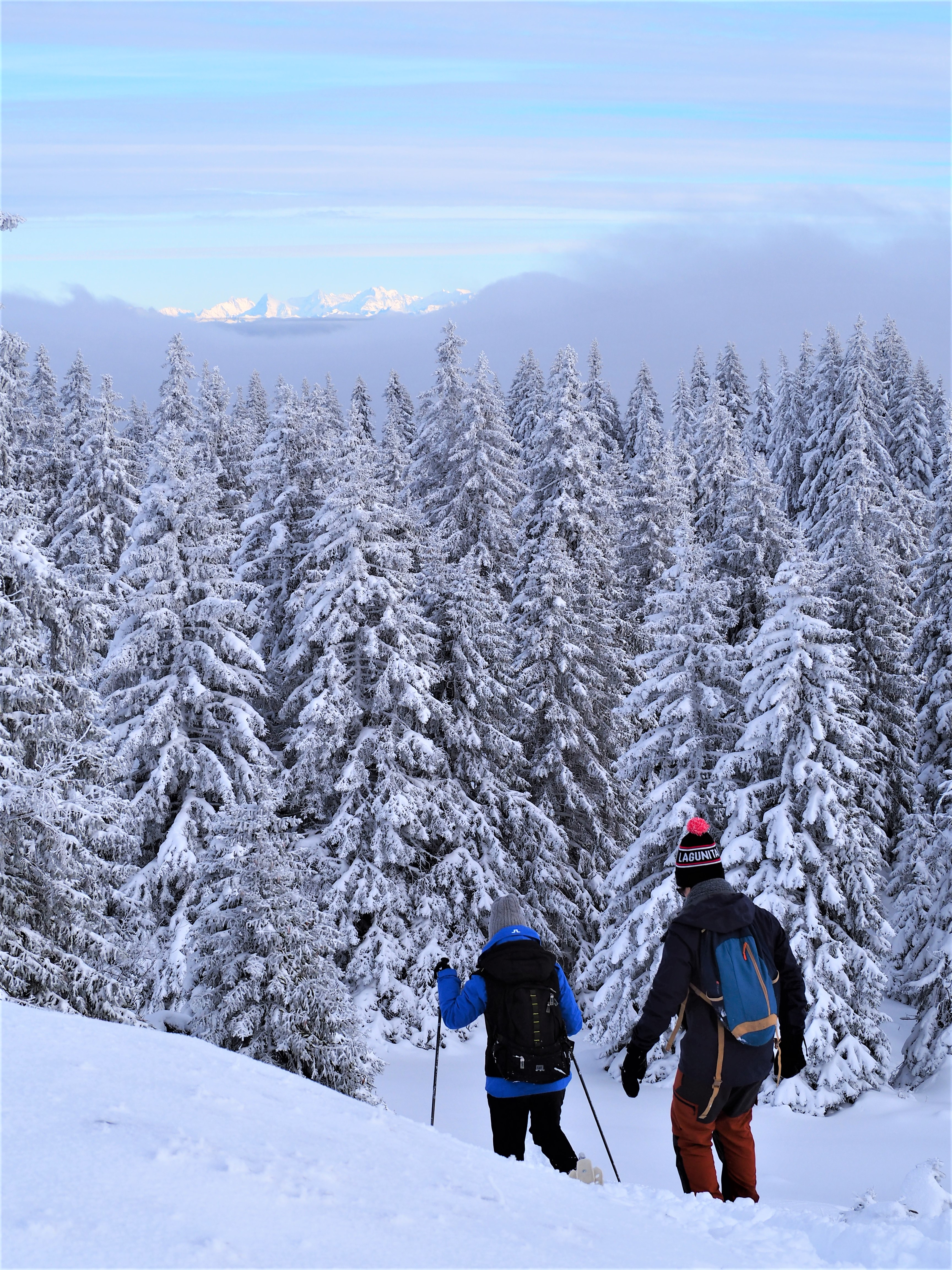 canton-de-vaud-randonnee-trail-mont-tendre-clioandco-blog-voyage.