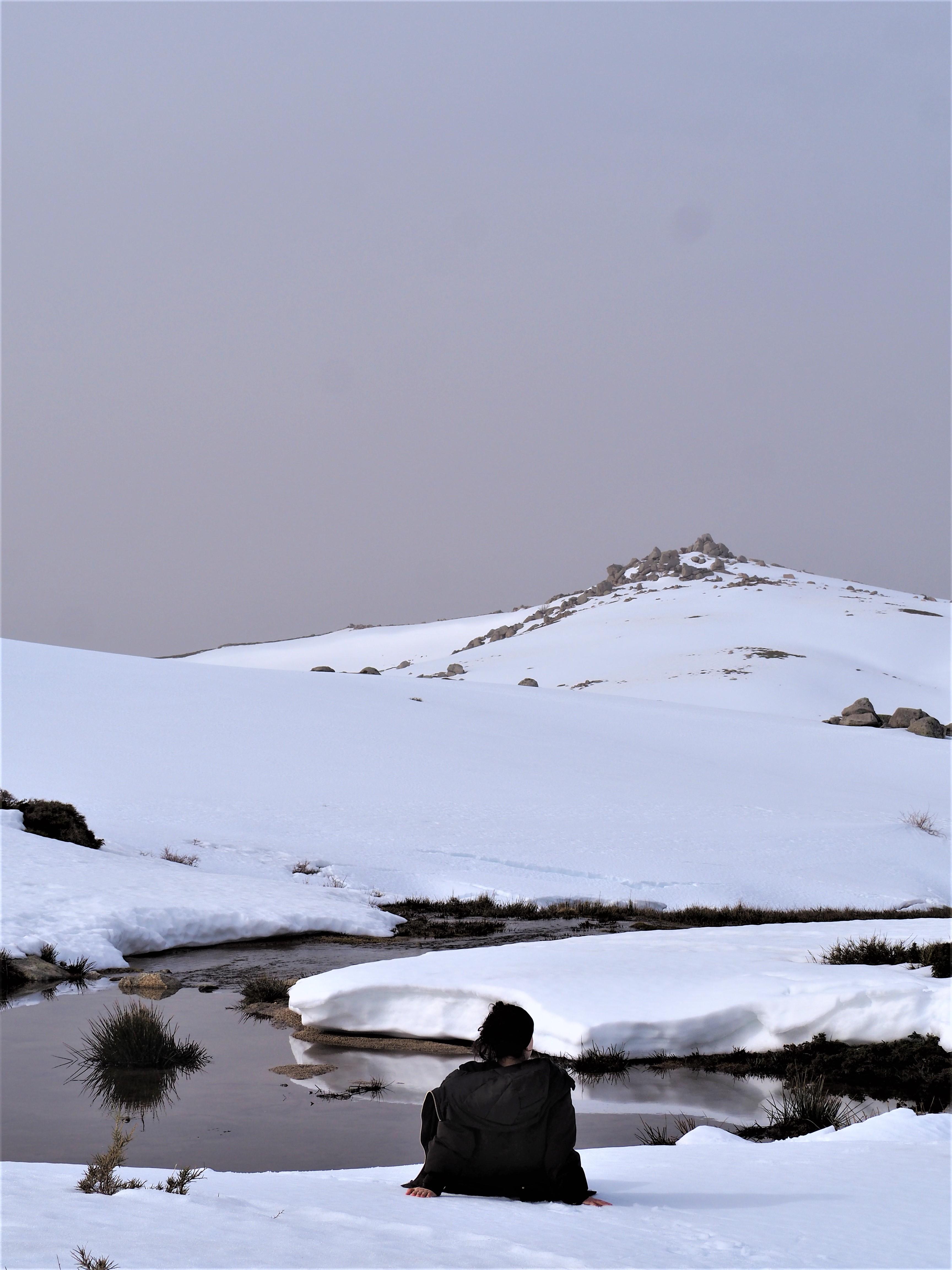 plateau du cuscionu hiver corse du sud alta rocca pozzines
