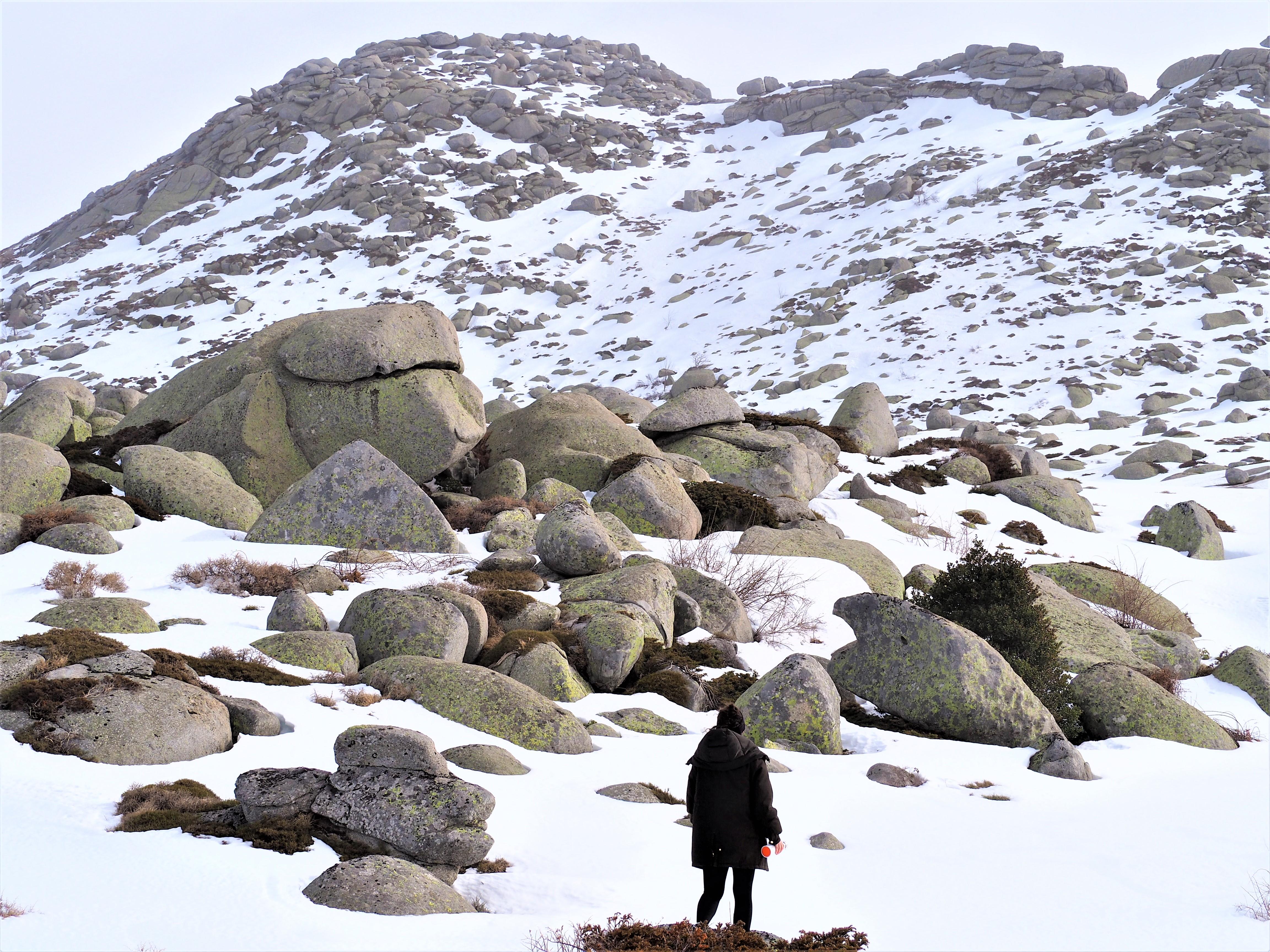 plateau du cuscionu hiver corse du sud alta rocca
