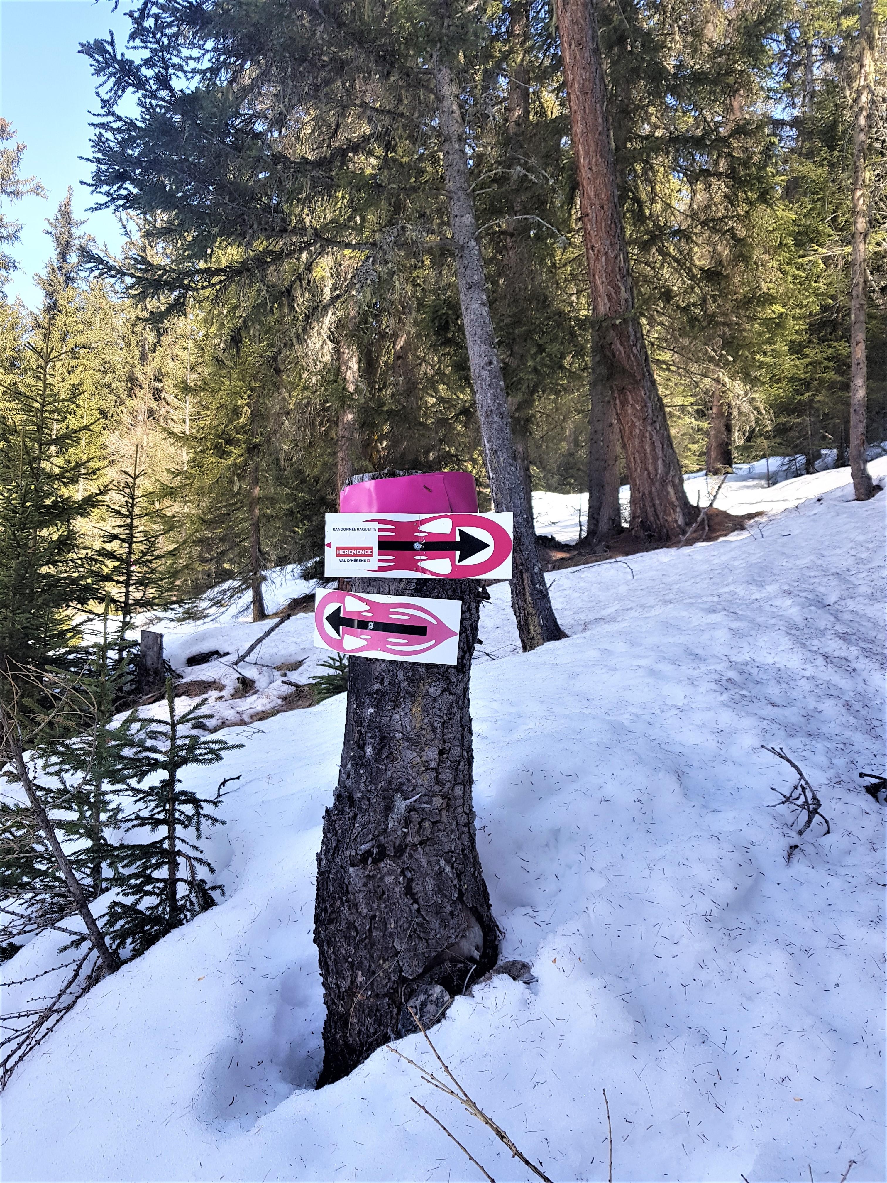 raquette chemin de randonnée valais suisse