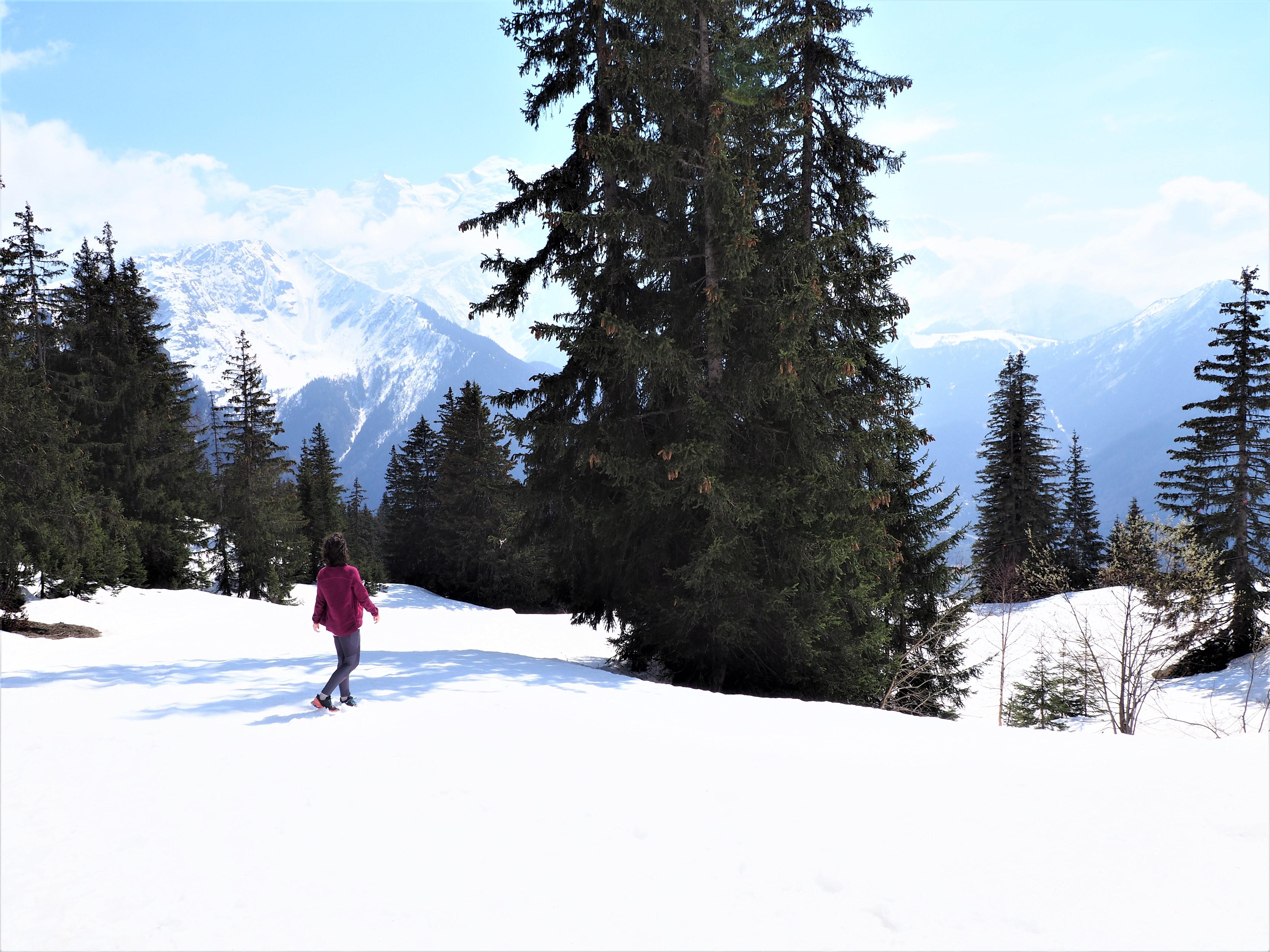 piste de ski et Mont-Blanc