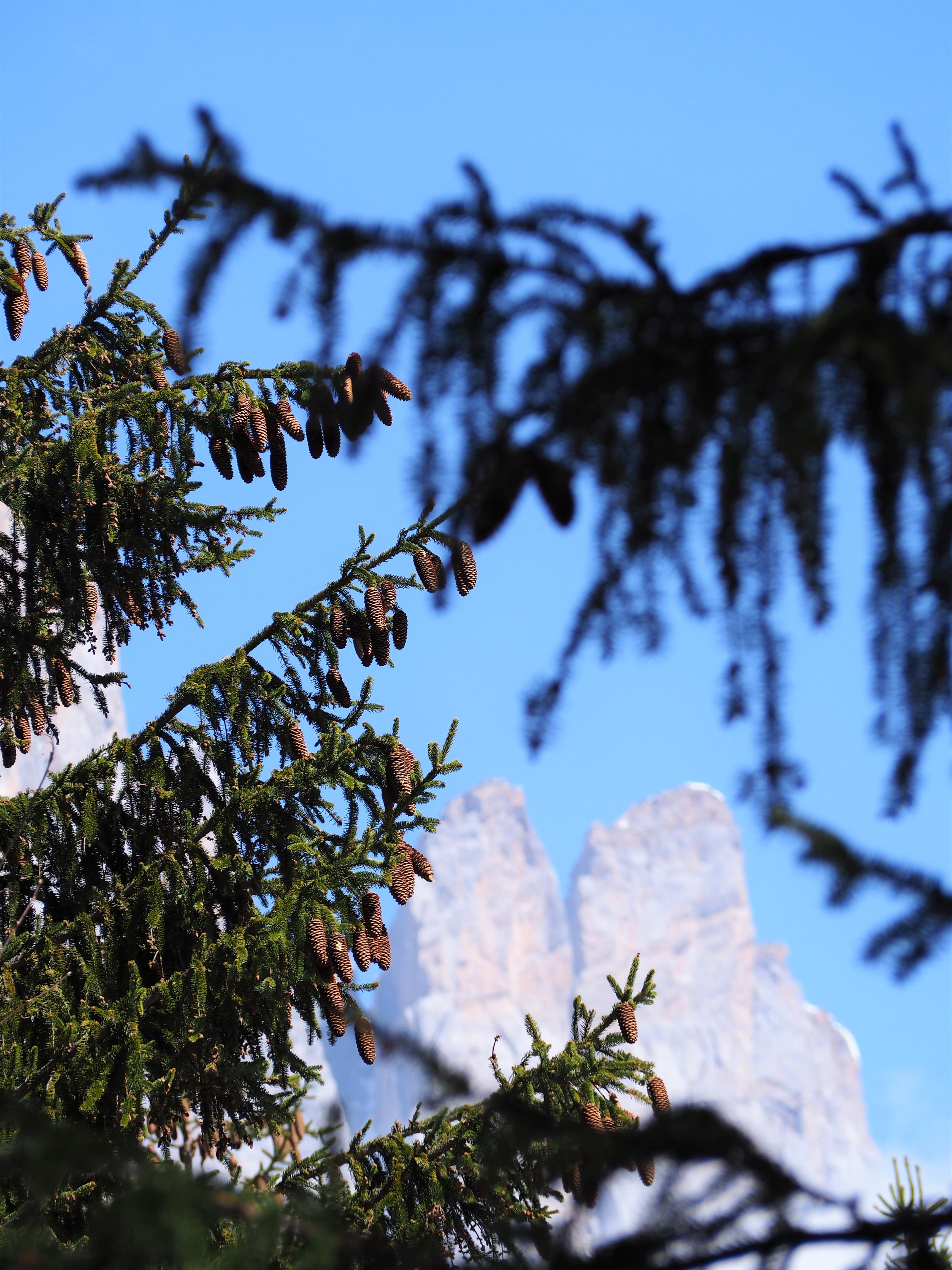 Rochers de Fiz - Haute-Savoie