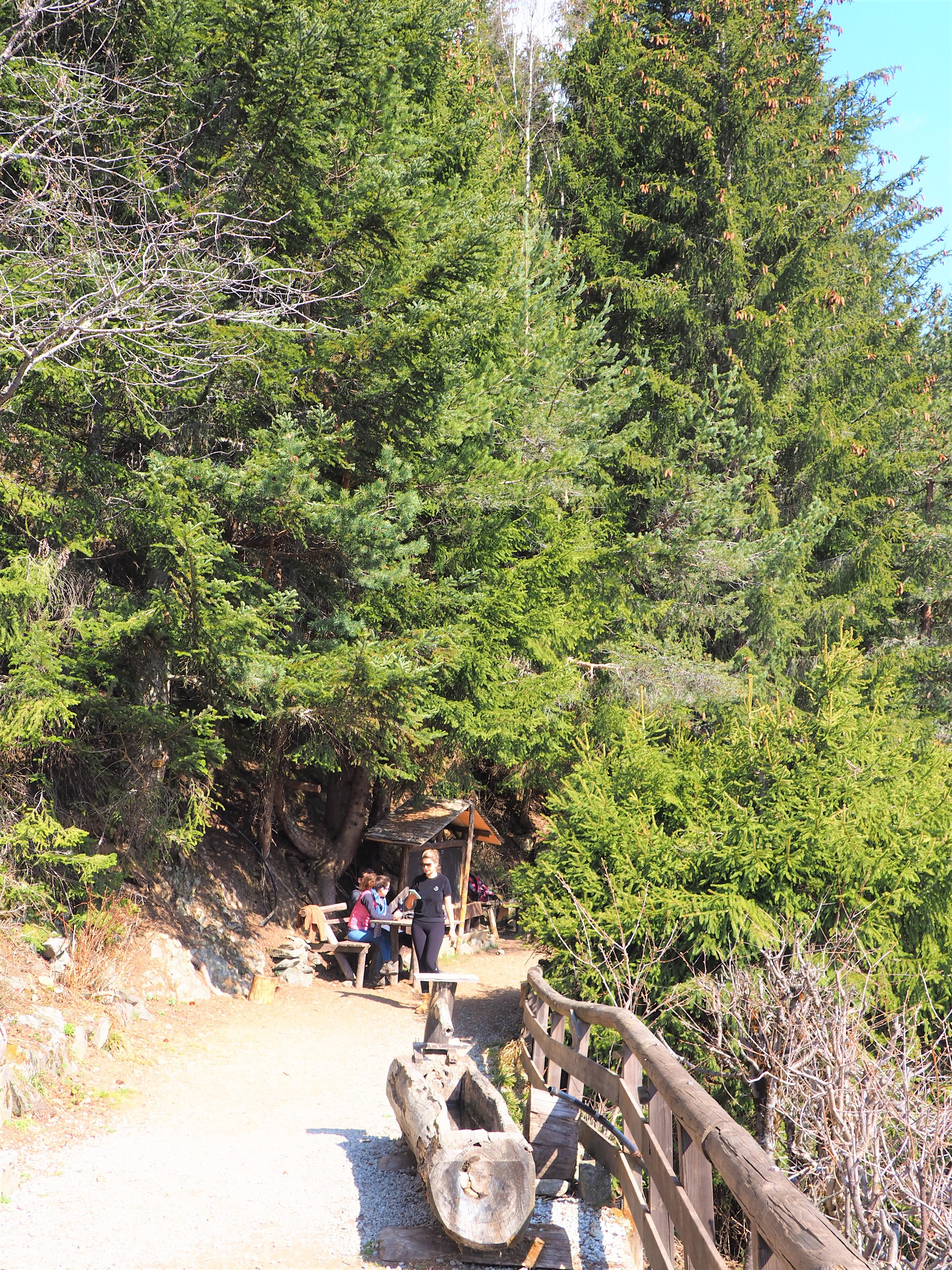 chalet de la floria chamonix randonnée