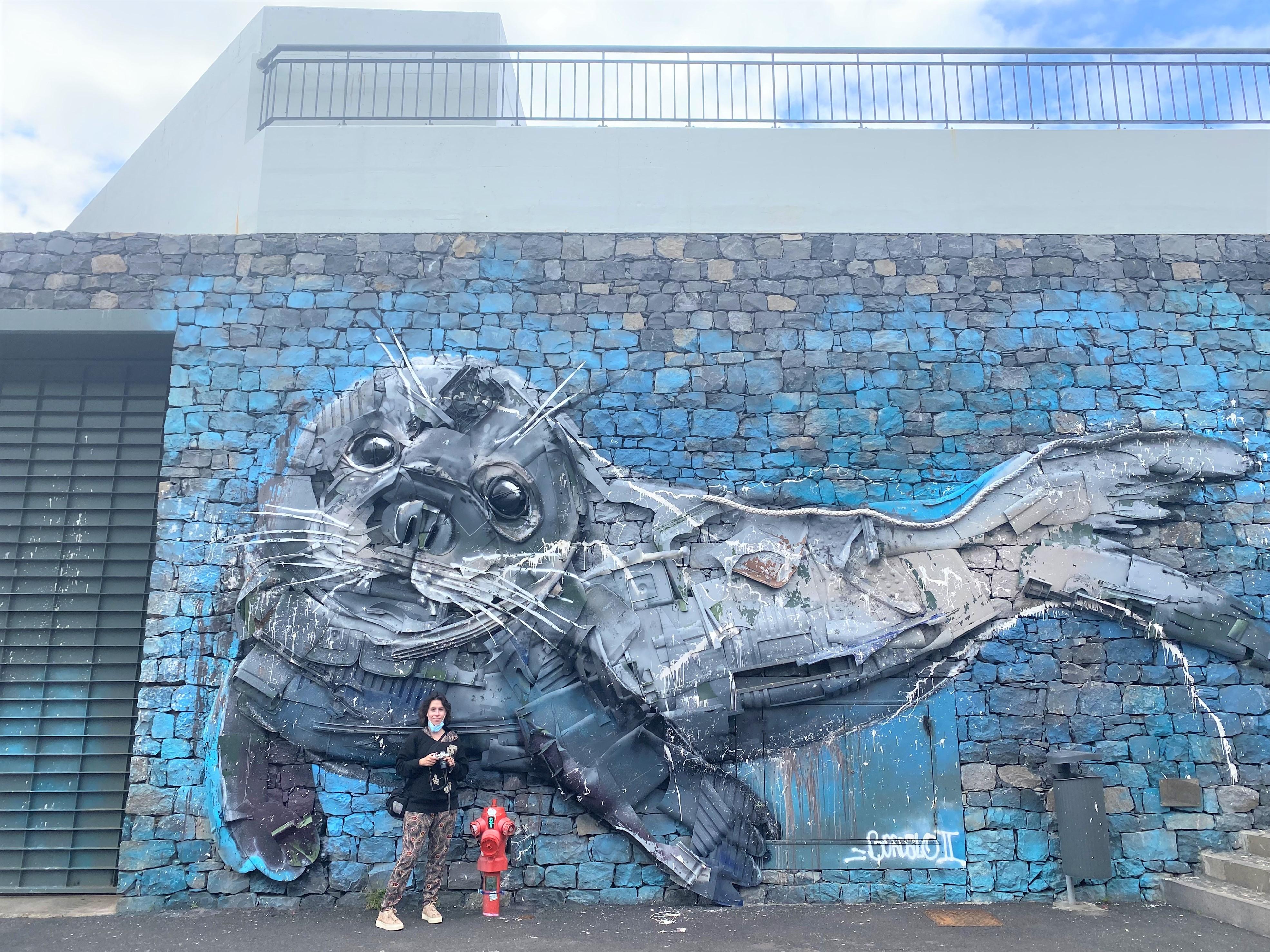 Câmara de lobos - Madère - Street art