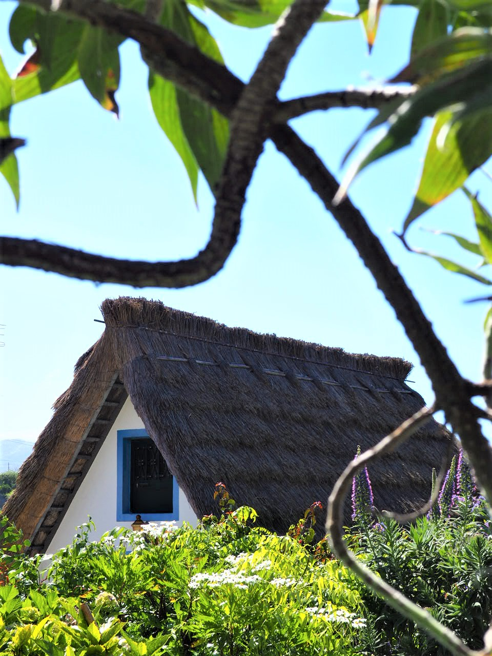 Santana-maisons-traditionnelles-madere-activite